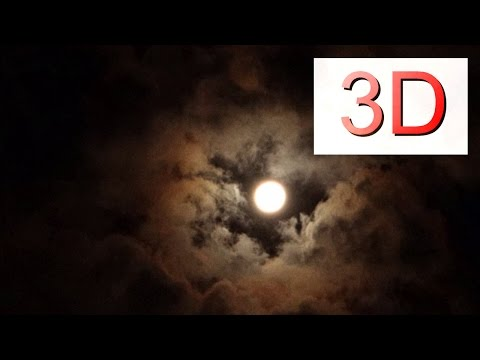 4K 3D Video, Forest Night Flight @ Full Moon