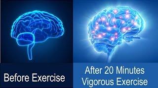 Exercise = Brain Activity  (Component 6)