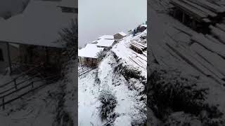 Snowfall short clip from Auli, Uttarakhand