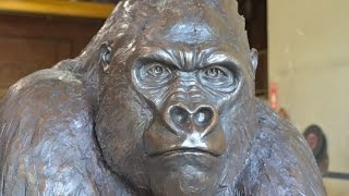 'The Gorilla Statue
