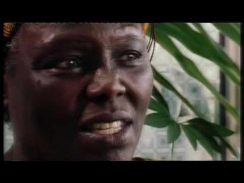 Climate Thinkers: Wangari Maathai