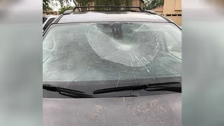 Phoenix vandals climbing on cars and kicking in windshields