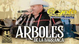 El Coyote y Su Banda Tierra Santa - Árboles De La Barranca (En Vivo)