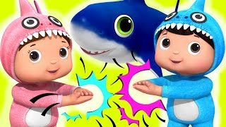 Baby Shark! | Baby Songs | Nursery Rhymes & Kids Songs | Little Baby Bum