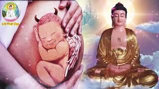 Muốn Biết CON CÁI Đến Với CHA MẸ Trong Kiếp Này Là Duyên Hay Là Nợ......Lời Phật Dạy
