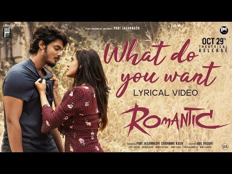 'What Do You Want Lyrical' song- Romantic movie ft. Akash Puri, Ketika Sharma