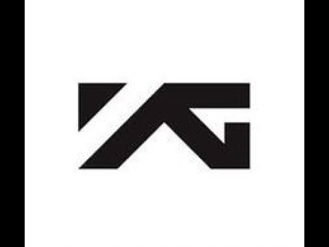 YG FAMILY (UPDATED 2017)