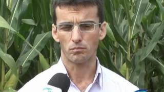 Entrevista com Césio Humberto de Brito