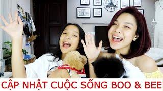 SongThưVlog: BOO & BEE CÓ GÌ MỚI? SONG THƯ DỌN VỆ SINH CHO HAI BẠN NHƯ THẾ NÀO?