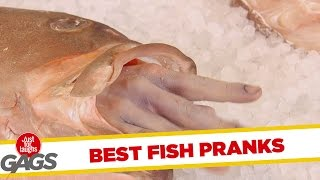 Best Fish Pranks - Best Of Just For Laughs Gags