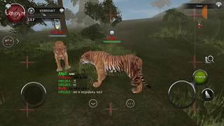 Wild Animals Online - Interview With Rivala