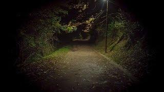 25 True scary horror stories to tell in the dark | Reddit stories from r/LetsNotMeet, r/AskReddit +