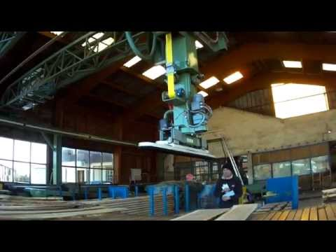 Joulin Gantry Robots   Outfeed of Band Saw & Sorting