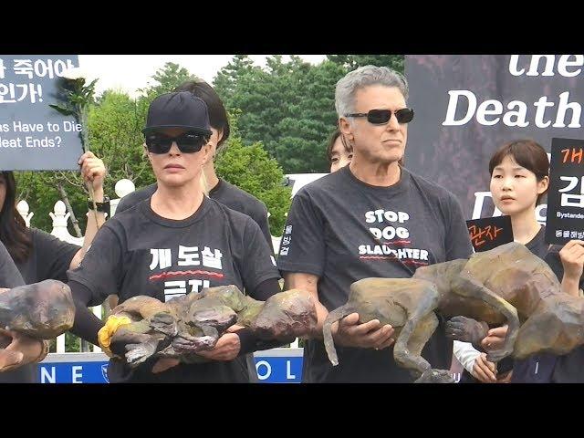 南韓三伏天吃狗肉進補 引發抗議聲浪