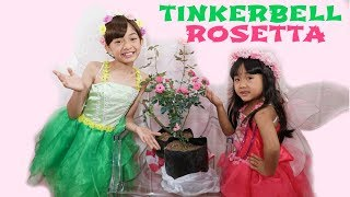 TINKERBELL and ROSETTA MAKEOVER