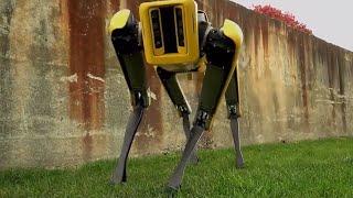 The New new sport mini | Cool Dynamic robot - New SpotMini, Coming . Soon
