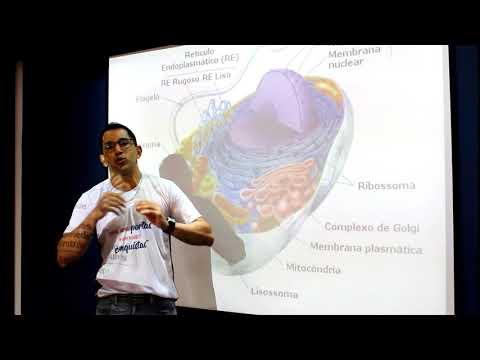 DICAS ENEM - BIOLOGIA