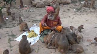 10 Million+ Views  |  A Lesson To Humanity By Shyam Sadhu - English Captions Added