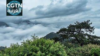 السياحة في الصين :جبل لوشان وجينغدهتشن     -