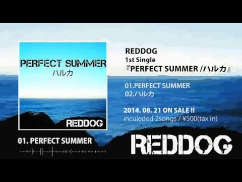 REDDOG 1st Single