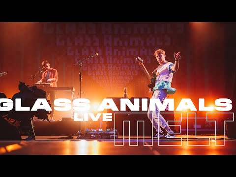Glass Animals | Live at Melt Festival 2017