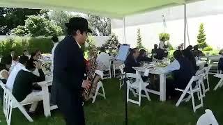 Shape of you | Farid Álvarez saxofonista