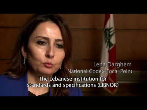 CODEX IN LEBANON - INSTITUTIONAL