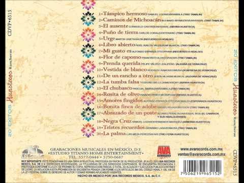 20 Exitos Huastecos Rancheras Trio Tamalin y sus Amigos