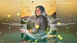 Video Kehta Hai Pal Pal (Remix) - Major Saab - DJ Jay