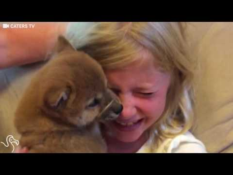 Little Girl Gets A Puppy For Her Birthday And Just Can't EVEN