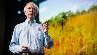 How to green the world's deserts and reverse climate change | Allan Savory