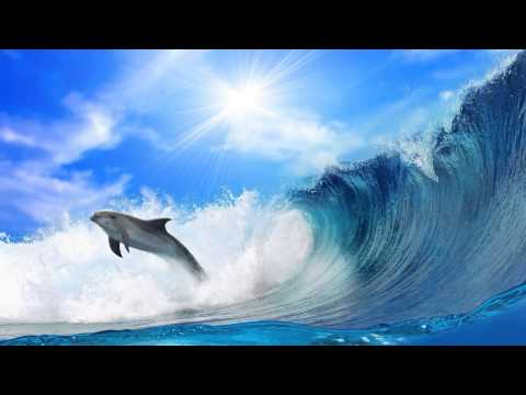 Pete Silver & Yustin Viviane - Dolphin (Original Mix)