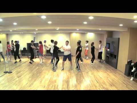 PSY 싸이-강남스타일 Gangnam Style 안무  Dance Ver.