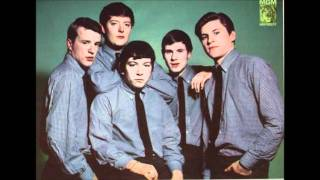 The Animals ~ Don't Let Me Be Misunderstood (1965)