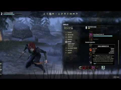 Eso nightblade pve dps dual wield bow guide 1 5 3 musica movil