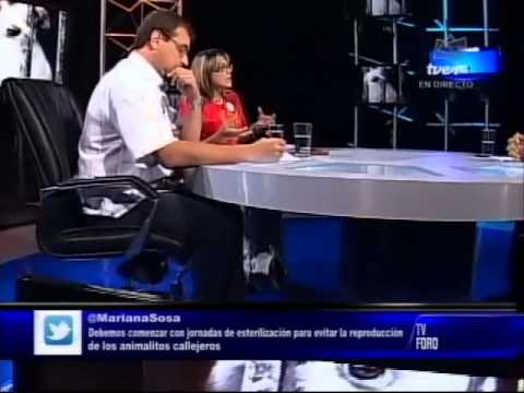 Misión Nevado En TV Foro - Smashpipe News