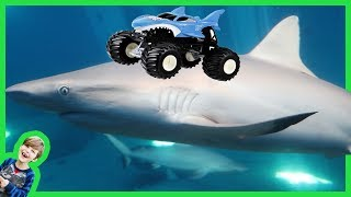 AXEL SHOW Monster Trucks for Children Visit the Aquarium with Real Sharks for Kids