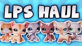 LPS Short Haired Cat Haul! | Alice LPS