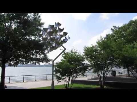 Waves and Particles: George Sherwood in Hudson River Park