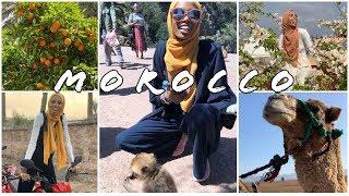 Morroco Travel Vlog