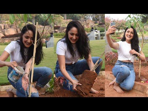 Actress Pragya Jaiswal participates Green India Challenge