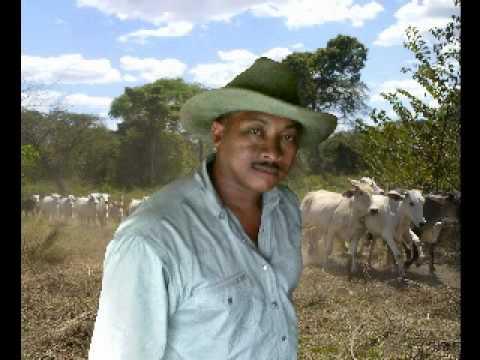 FREDDY GARRIDO (MI JOROPO ZAMARRO).mpg