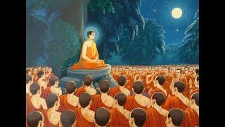 1059:NĂM LÝ DO ĐỂ GÂY DỰNG TÀI SẢN(ĐĐ Thích Thiện Tuệ Thuyết Giảng Hay)