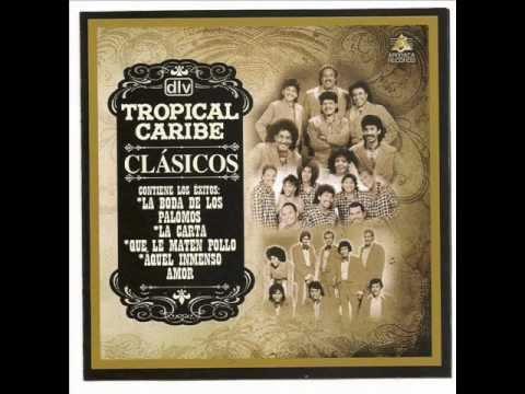 TROPICAL CARIBE-TU ME HACES FALTA - PEDRITO LINDO- EL PALOMO.wmv