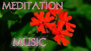 10 minute meditation music   buddhist meditation music   deep sleep music