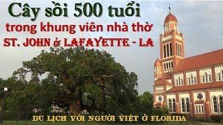 Ngôi nhà thờ đẹp và Cây Cổ thụ 500 tuổi ở Lafayette - LA (Cuộc sống Mỹ - Vlog 71)