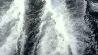 Magnetfisch - Meerheit