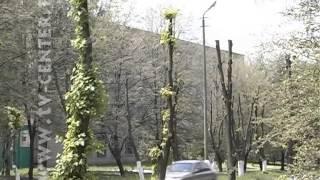 Обновленная улица Рудакова