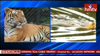 Royal Bengal tiger dies at Nehru Zoological Park Hyderabad..
