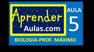 BIOLOGIA - AULA 5 - PARTE 1 - CELENTERADOS